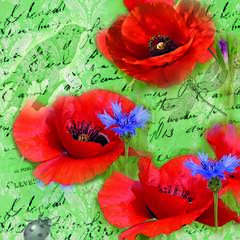 Napkin 33 Painted Poppies Green