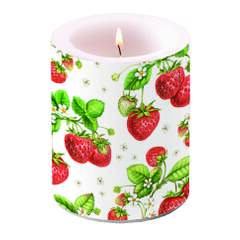 Candle Big Strawberry Plant SE: 6