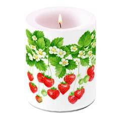 Candle Big Summer Fruits SE: 6