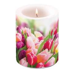 Candle Big Glorious Tulips