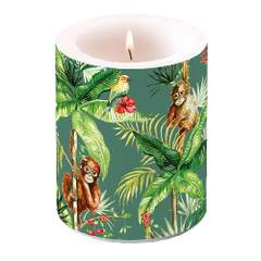 Candle Big Orangutan Green