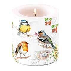 Candle Small Birds On Twig