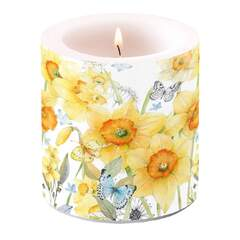 Candle Small Classic Daffodils