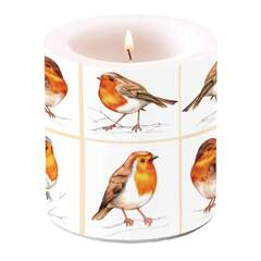 Candle Small Robin Family